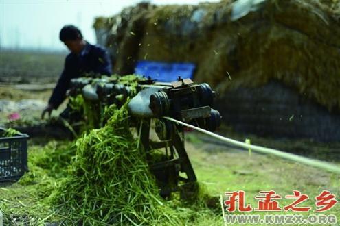 安奉铁道鱼台风景区